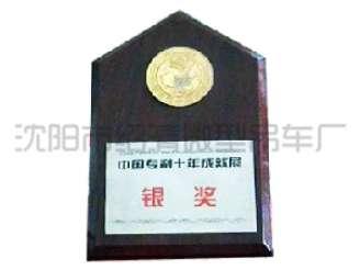 95年专利成就展获银奖